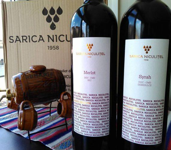 sarica-niculitel-9